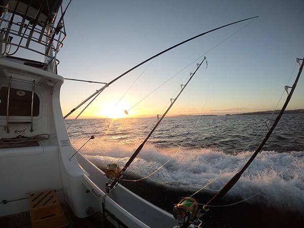 Deep Sea Fishing Charters Bay of Islands