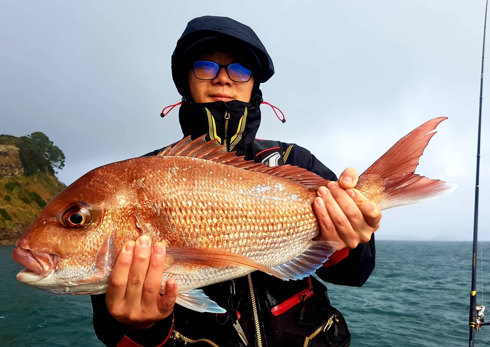 Snapper Spot-X Fishing Charters Bay Of Islands, New Zealand