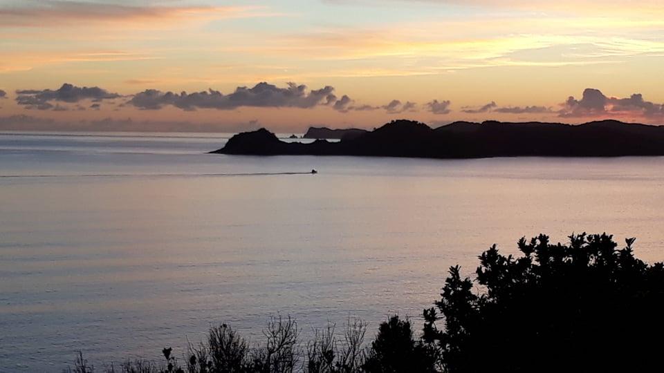 Bay of Islands Fishing Charters 210618
