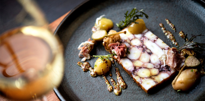 press background - octopus terrine