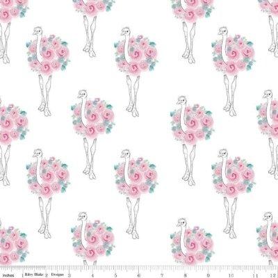 Riley Blake Fabric - Curiosities - White