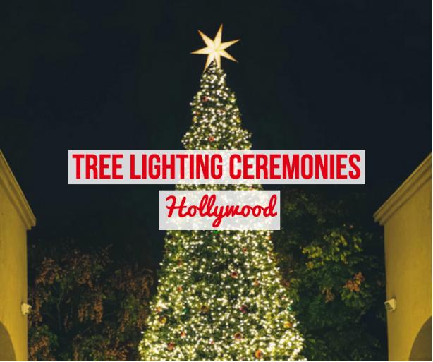 hollywood tree lighting