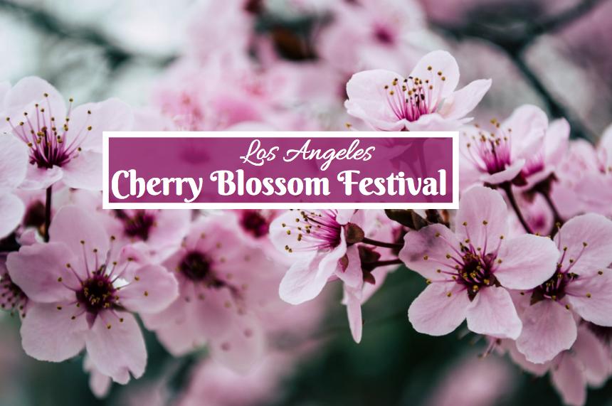 Cherry Blossom Festival Monterey Park