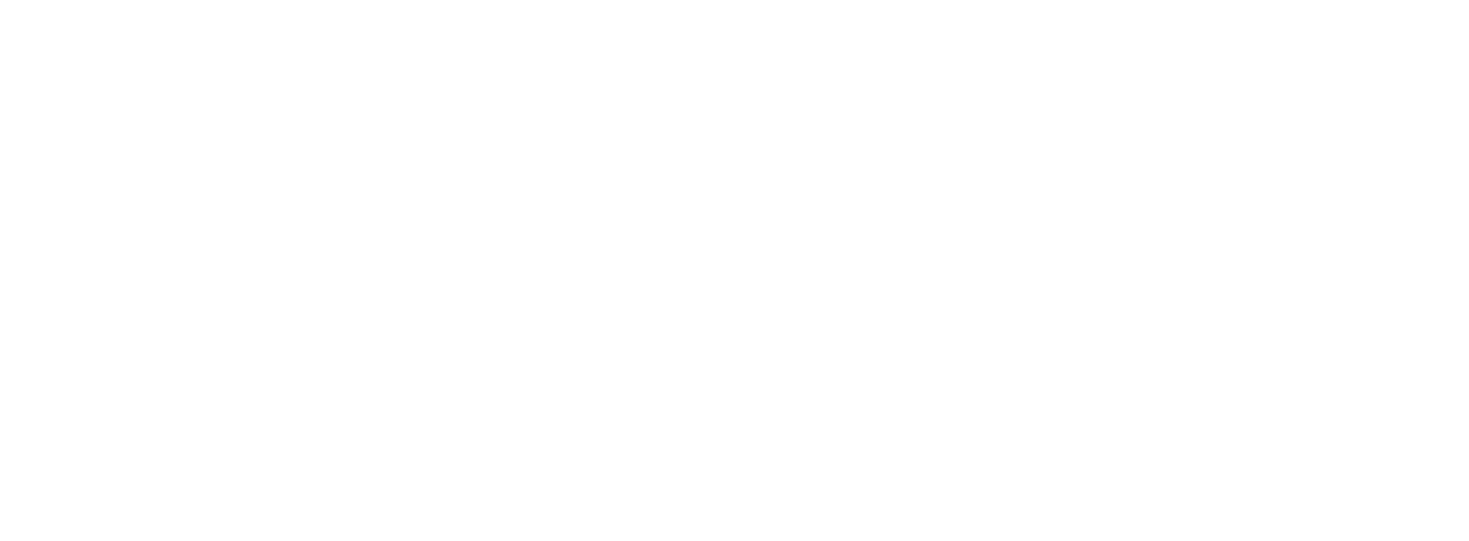 Emerce100 (2e plaats) 2019