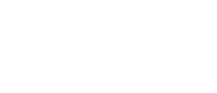 CONNECT DIGITAL AUDIENCES