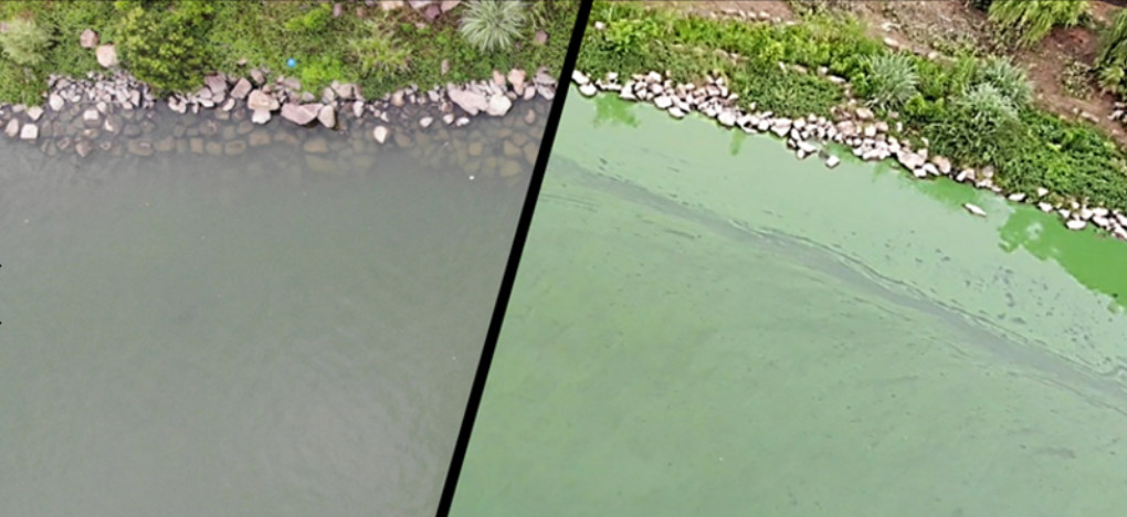 China Nahnu Lake Toxic Algae Bloom Removal