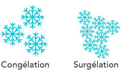 illustration congelation Vs surgelation