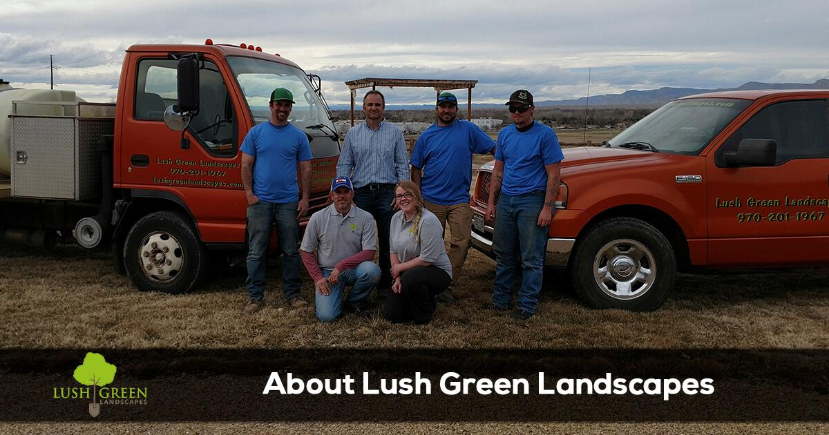 Learn more about Lush Green Landscapes in Grand Junction, Colorado.