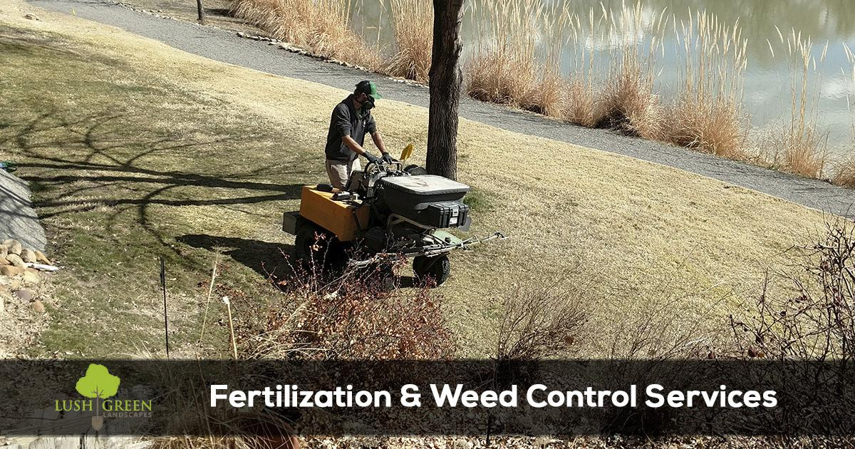 Grand Junction Colorado fertilization and weed control services