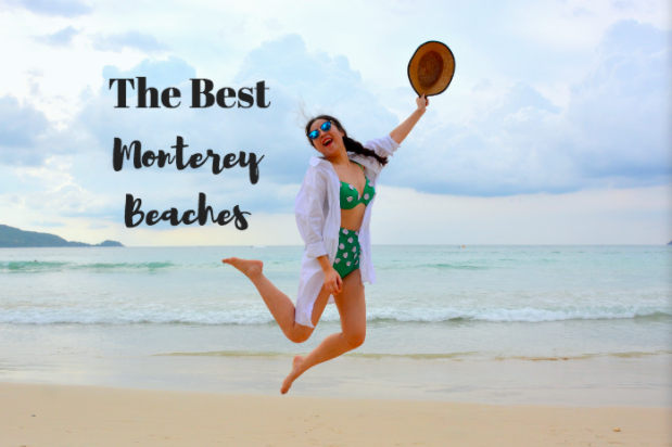 Best Beaches Monterey