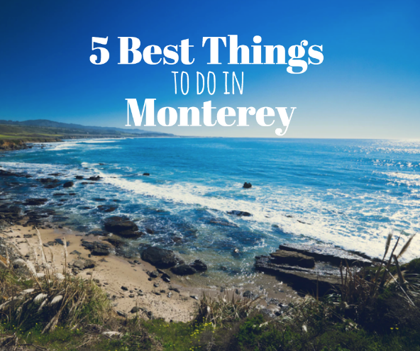 5 Best things to do in Monterey