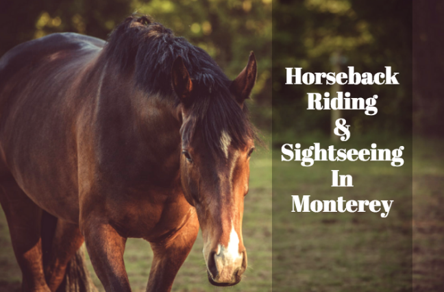 monterey bay horseback riding