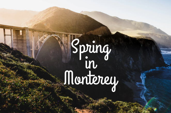 things to do in Monterey during spring