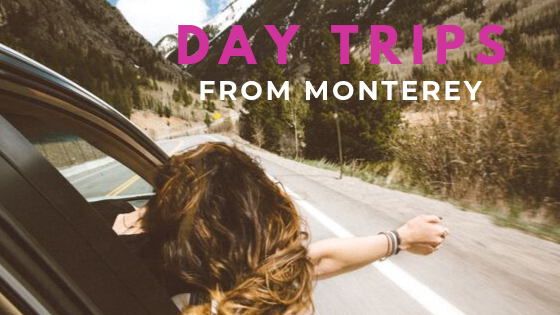 monterey california day trips