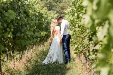 Couples in a vineyard