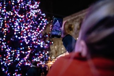 Hands with a phone taking a picture of the christmas tree