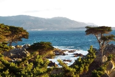 17-Mile Drive View