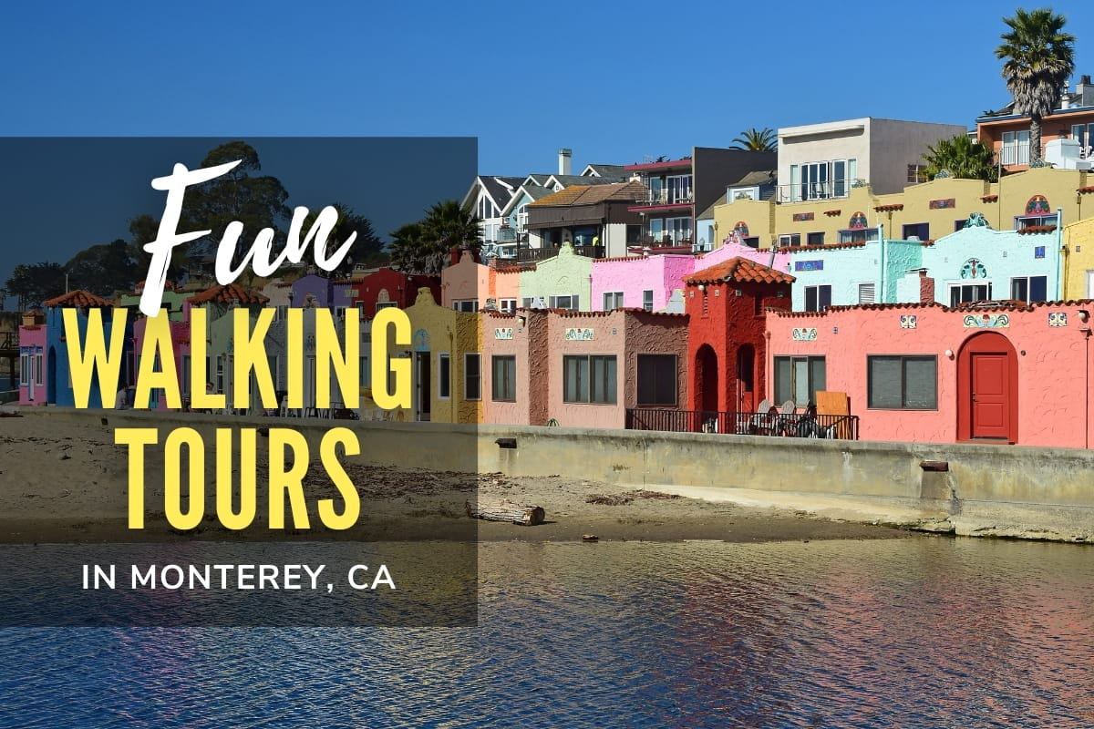 Colorful landscape from around Monterey California - Fun Walking Tours in Monterey, CA