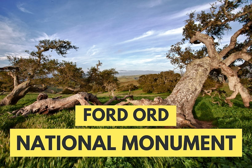 Fort Ord National Monument - Scene with oaks