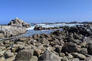 The Great Tide Pool