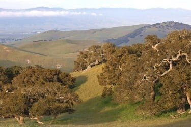 Fort Ord View
