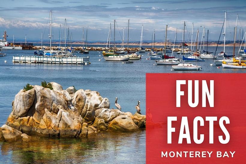 Fun Facts - Monterey Bay - Boats Landscape