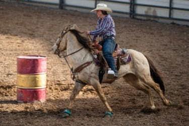 Woman riding a horse - 2