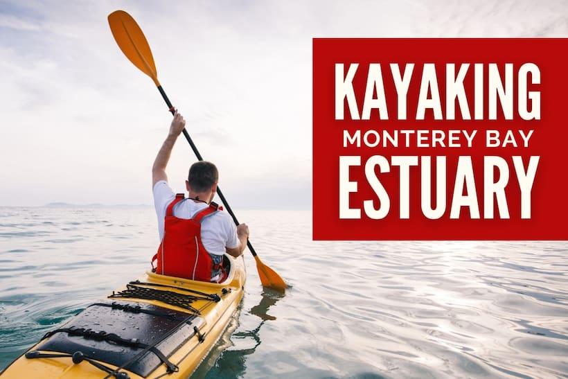 Kayaking Monterey Estuary - Man kayaking