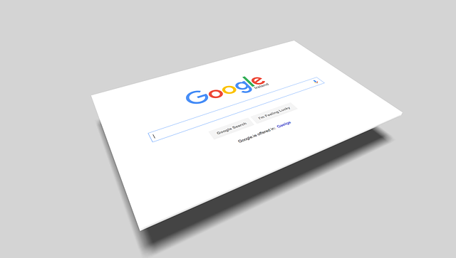 Google search box