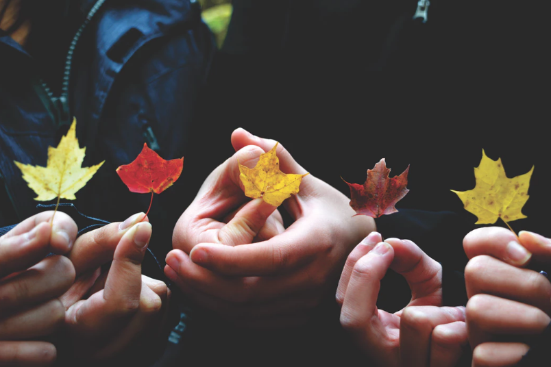 people holding different colored leaves