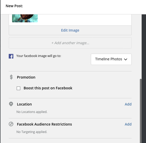 additional options for Facebook in Hootsuite composer