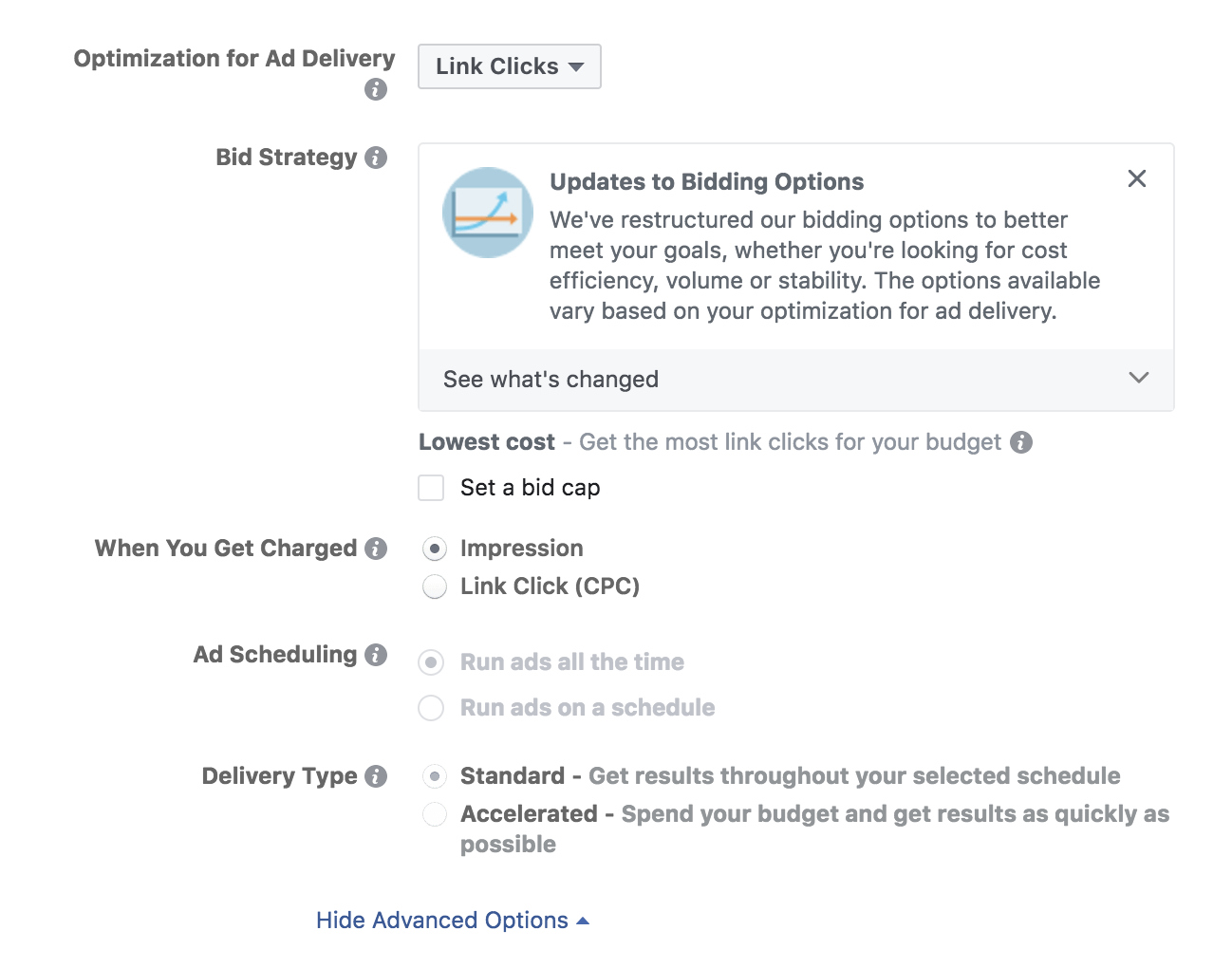 delivery options in Facebook Ads