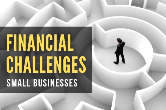 Entrepreneur inside a labyrinth - Financial Challenges for Small Businesses