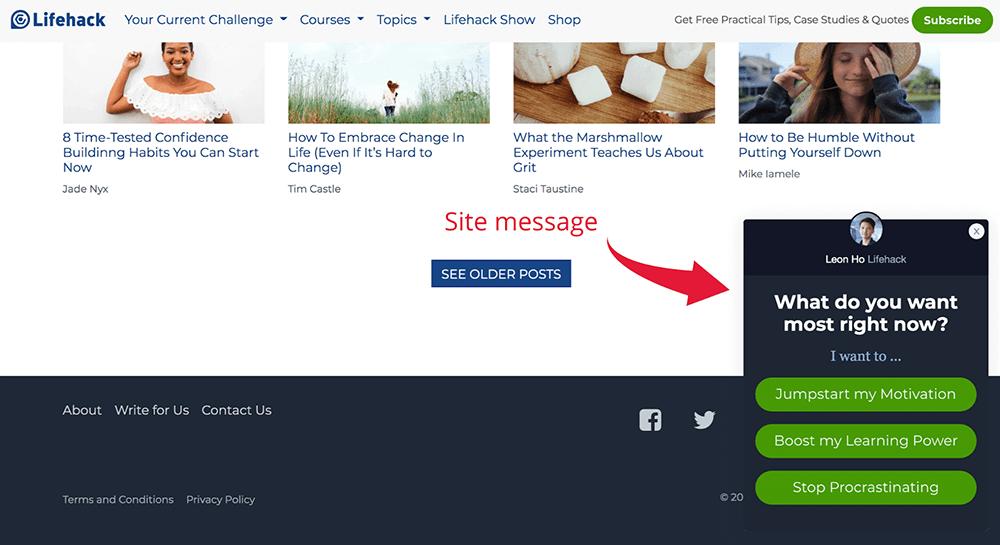 Site message segmentation survey