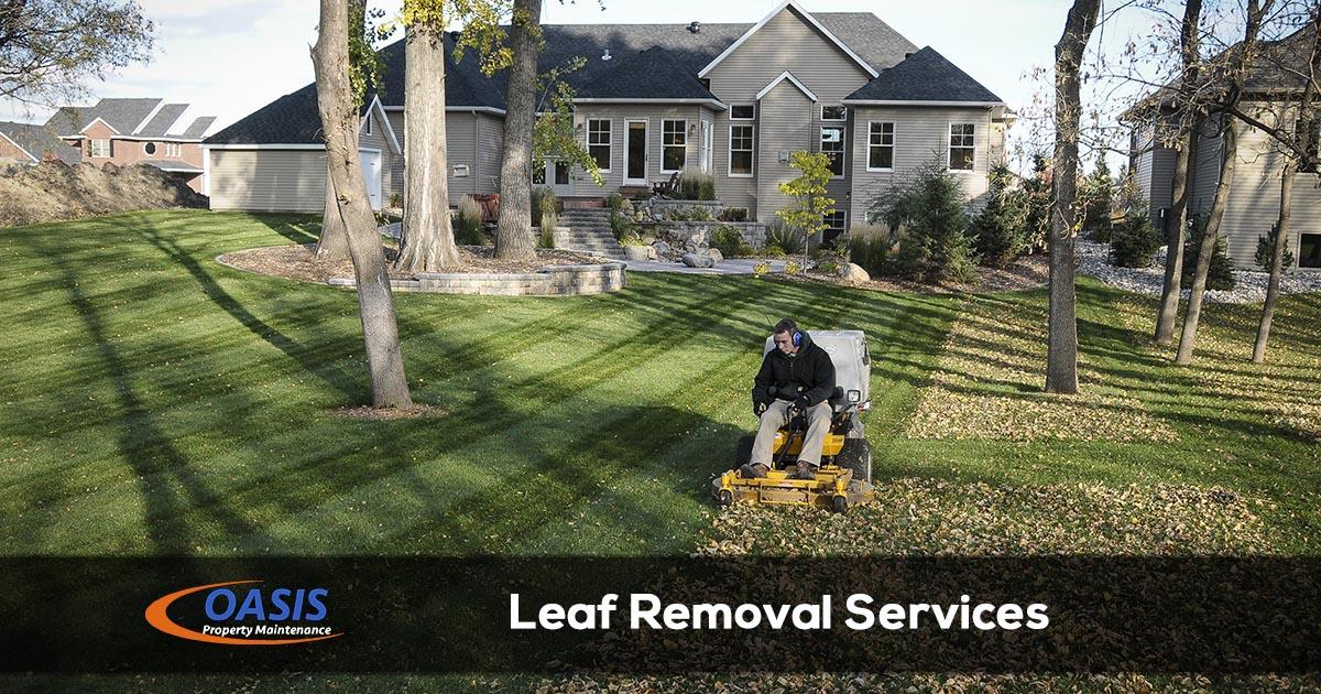 Arkansas Leaf Removal Services