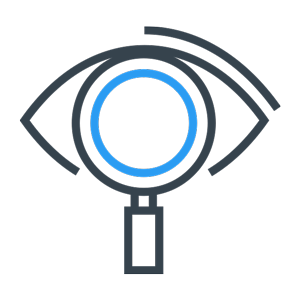 eye magnifying glass icon