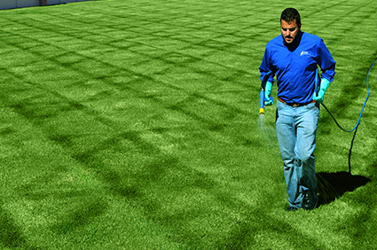 Lawn Fertilization, Weed Control, and Aeration in Salt Lake City