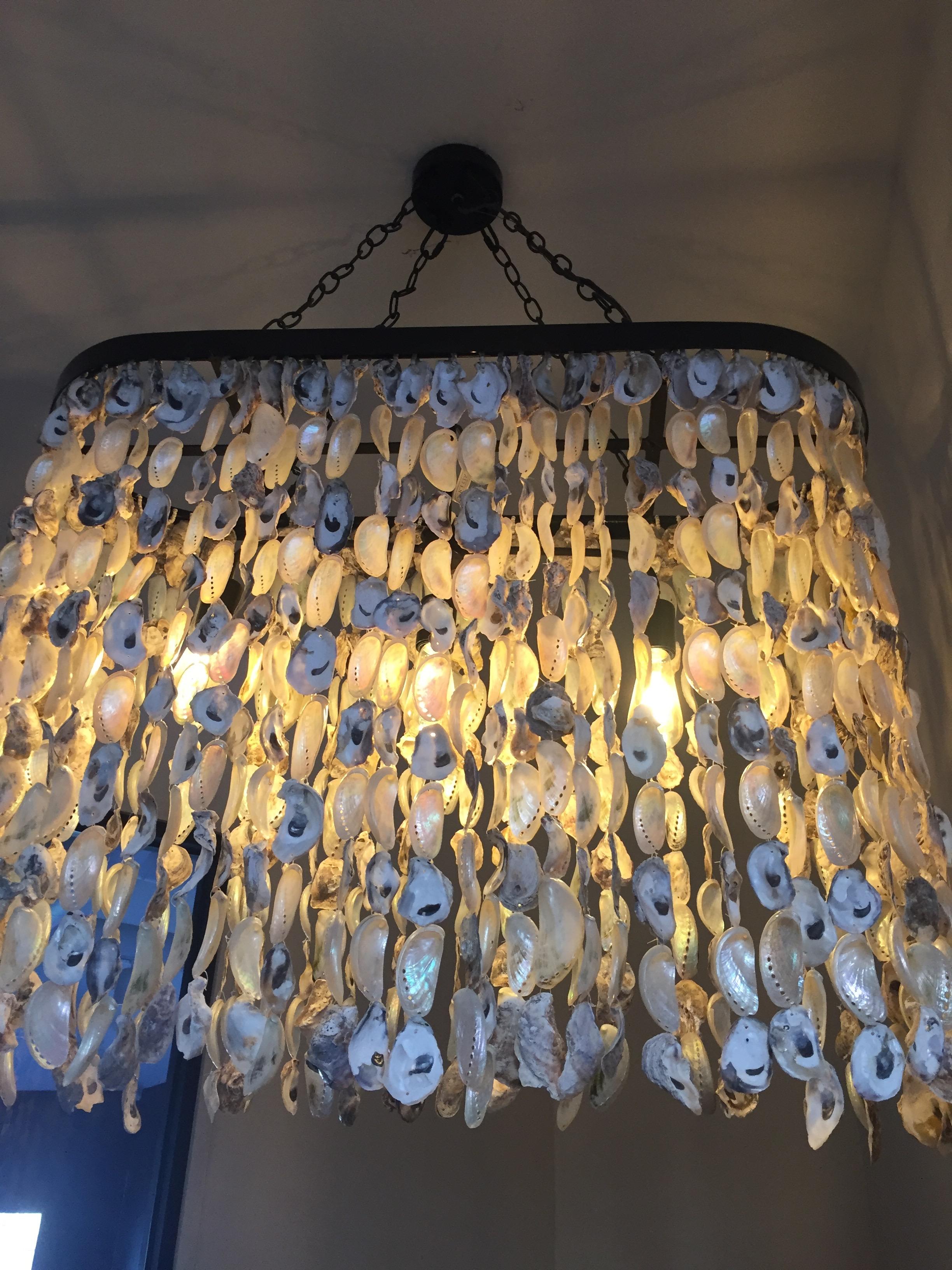 seashell light shade at Saltine