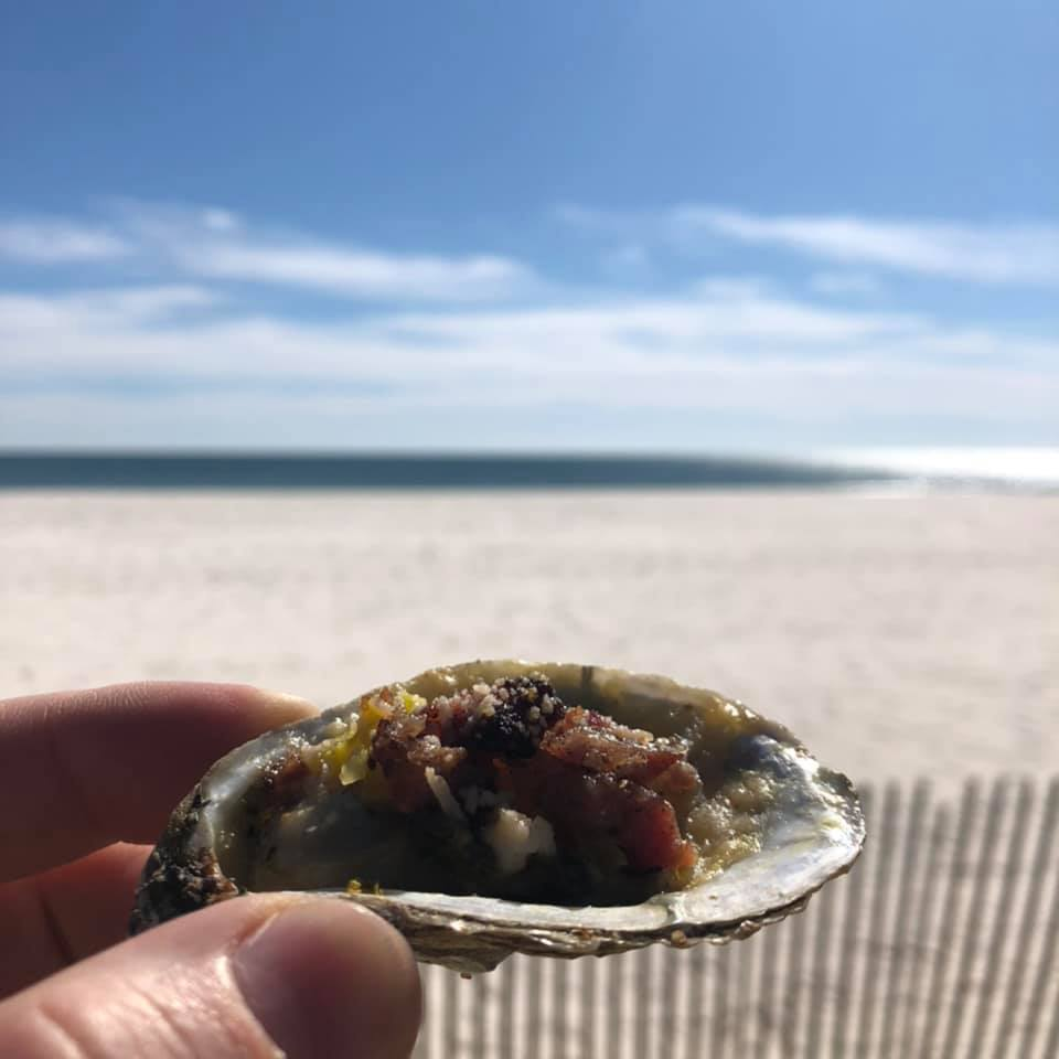 oysters at the beach