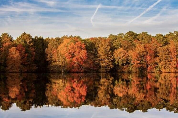 reflective lake with trees in the fall