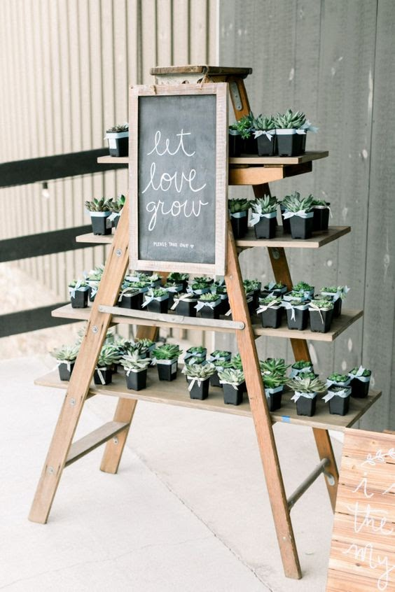 """photo via UnitedWithLove.com, plant stand with succulents with a sign that reads """"Let Love Grow"""""""