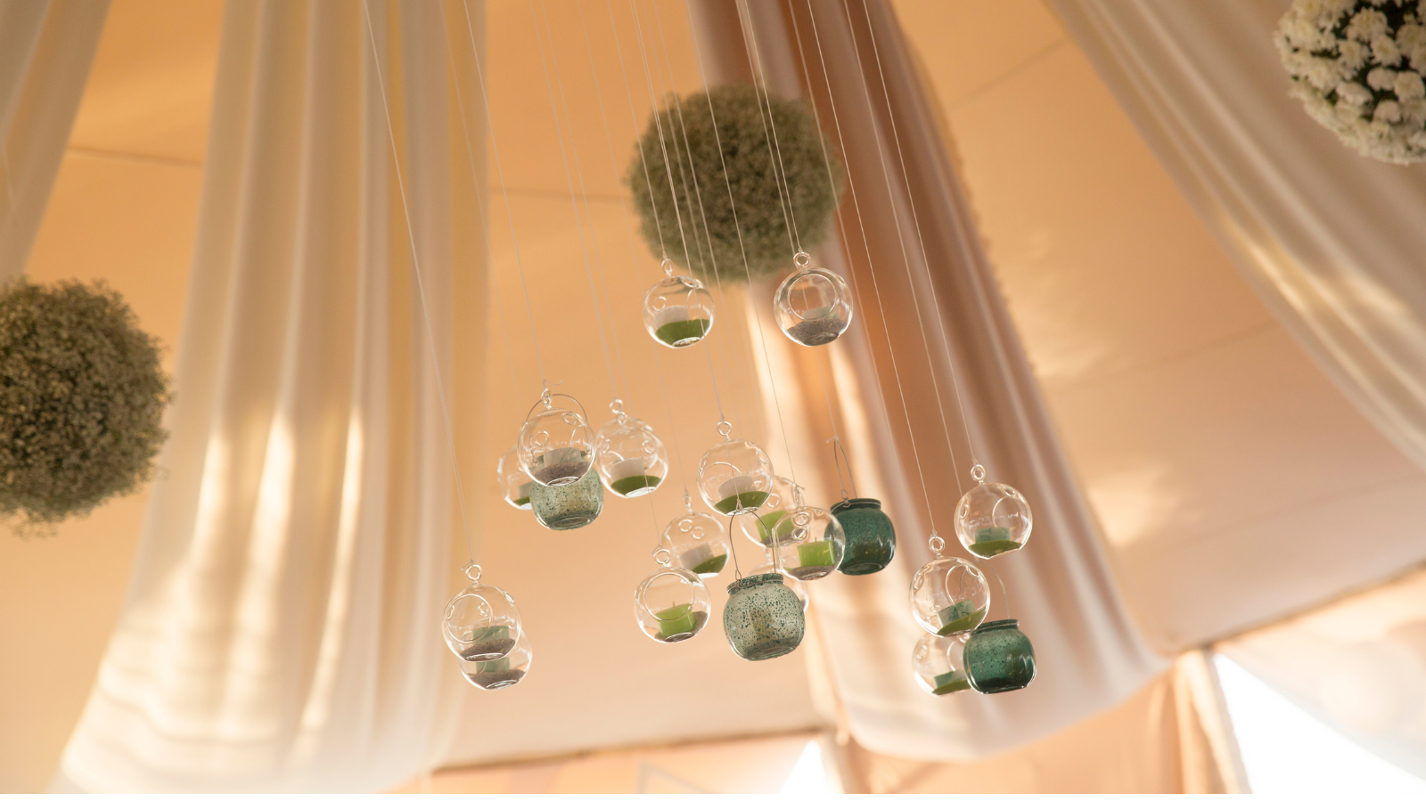 hanging greenery in tent