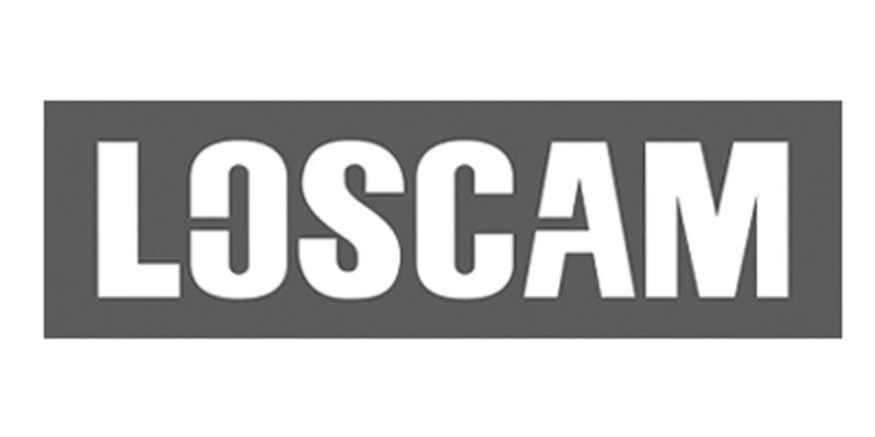 greyscale Loscam logo