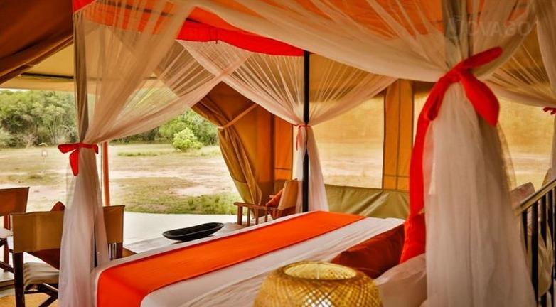 Set up at Togoro 1 east central of Serengeti National Park provides easy game drives to most of the Serengeti areas.
