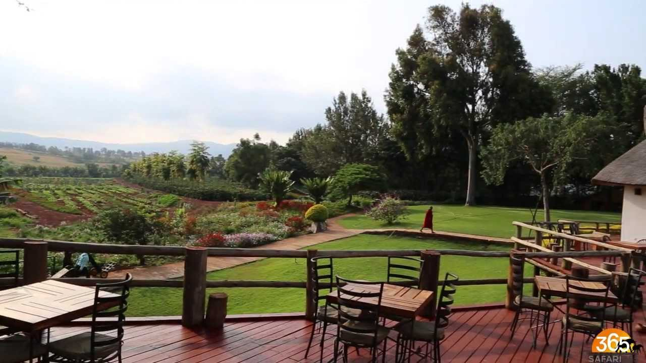 In the heart of coffee plantations and just 5 minutes away from the crater gate, Ngorongoro Farm House is the ideal base to explore the crater.