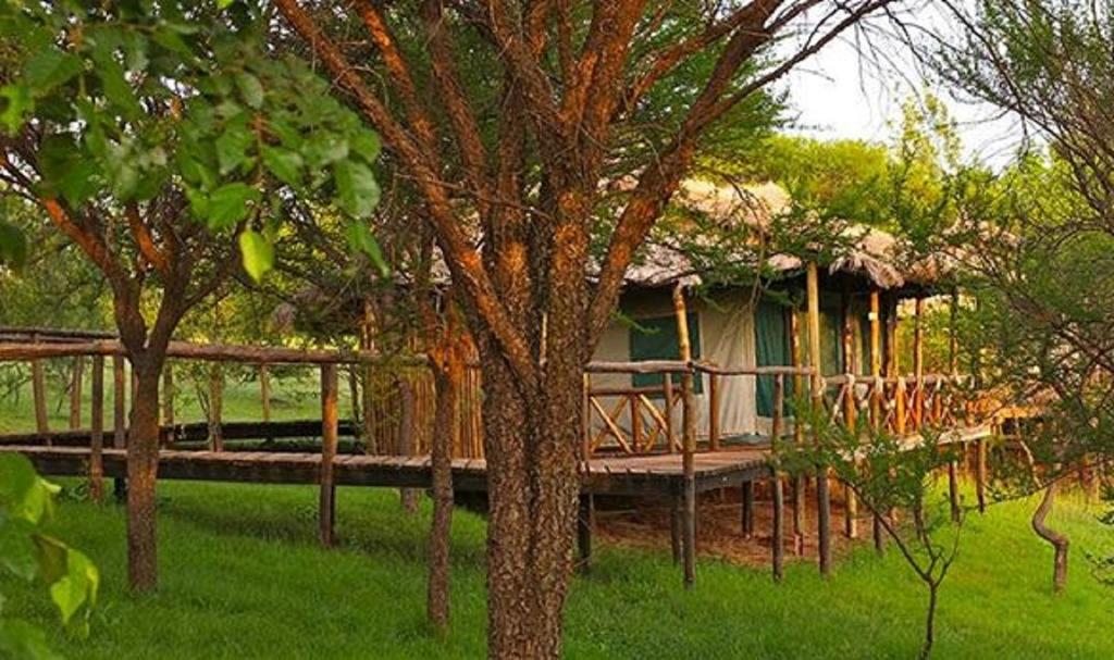 Ngorongoro Forest Tented Lodge is centrally situated on the northern safari circuit in Tanzania.