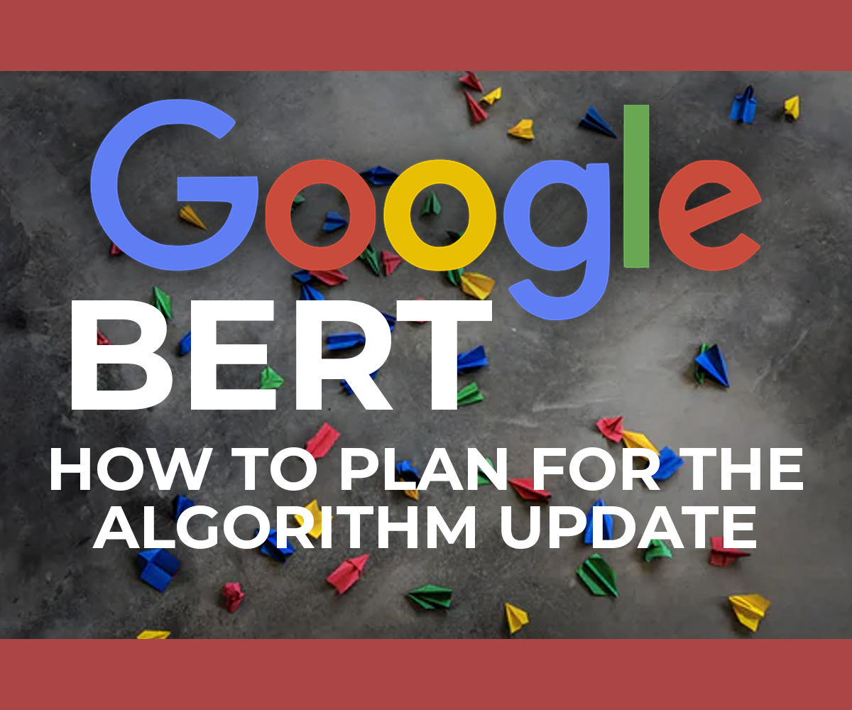 What is Google BERT and What to Do About It