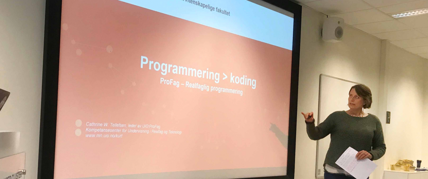 Introducing programming to the curriculum