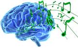 Sinfonia Biotherapeutics