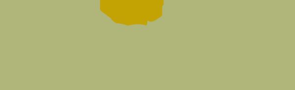 Cumberland Valley Graphic Logo